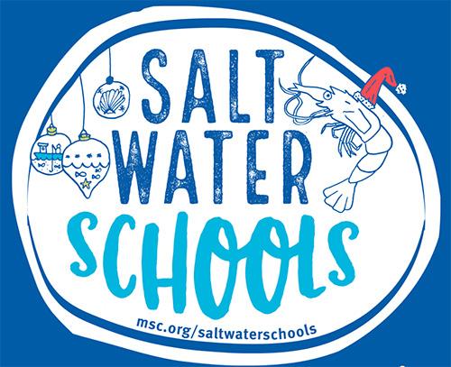 saltwater school teaser